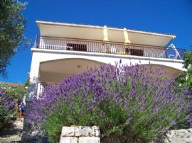 Hvar Vrboska - Appartement Zimmer - Apartmani Stipisic ..